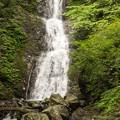 Photos: 寂光の滝