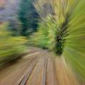 Photos: スピード
