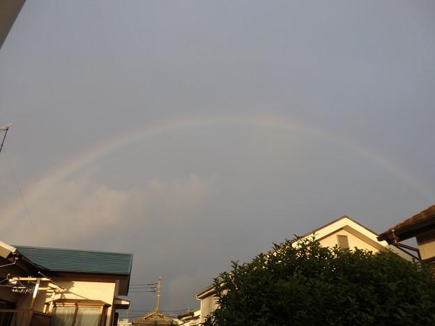 虹が綺麗だね