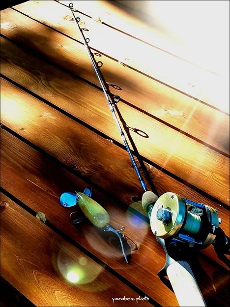写真: バスプロショップ Graphite Series 3' Casting Rod