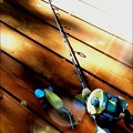 Photos: バスプロショップ Graphite Series 3' Casting Rod