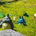 Photos: 妖精達のいる庭