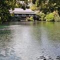 満水の小浜池