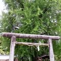 丹生酒殿神社02