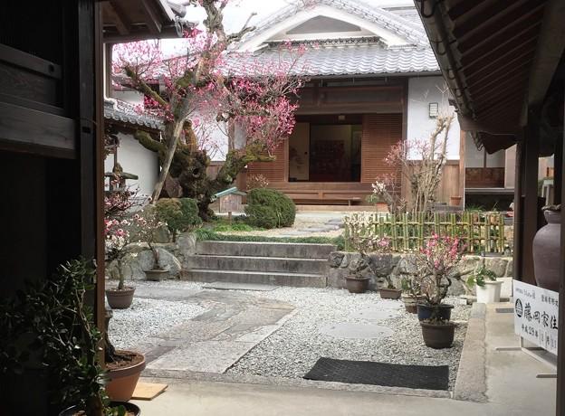 写真: 藤岡家住宅20