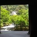 写真: 南禅寺新緑