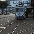 写真: たま電車:路面電車06
