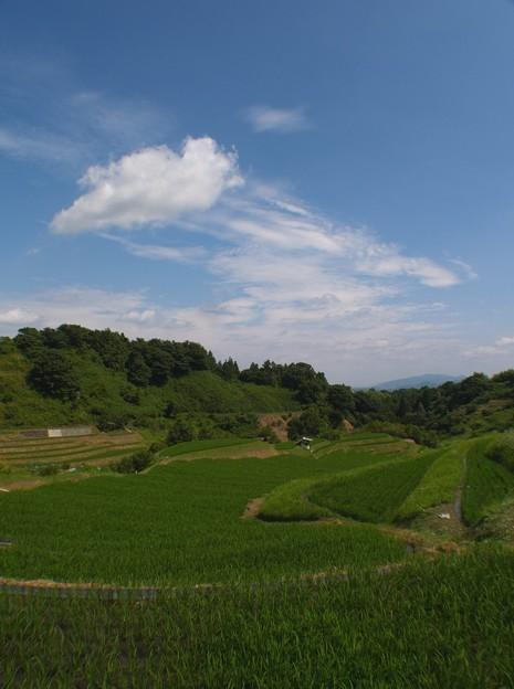 日本の原風景:棚田04