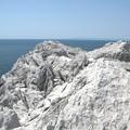 写真: 平成百景:白崎海岸05