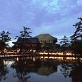写真: 東大寺:奈良燈火絵03