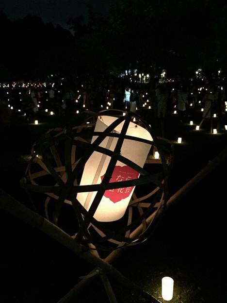 写真: 浅茅ヶ原:奈良燈火絵06