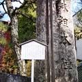 Photos: 明治維新発祥の地:天誅組01
