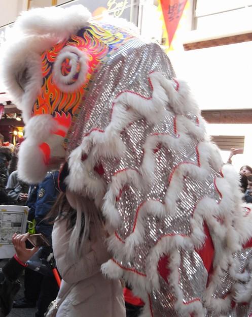 がぶり:春節祭11