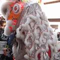 写真: がぶり:春節祭11