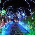 写真: 光のトンネル:光の旅06