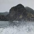 写真: 雨の但馬海岸遊覧03