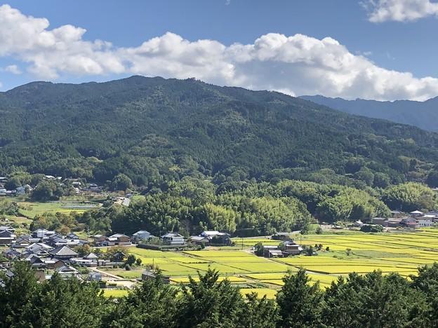 甘樫丘展望台04 飛鳥寺と田園風景
