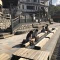 写真: 湯村温泉02 足湯
