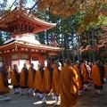写真: 祈りの秋10 高野山