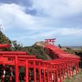 写真: 元乃隅稲成神社06
