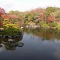 写真: 心字池:晩秋万博公園05