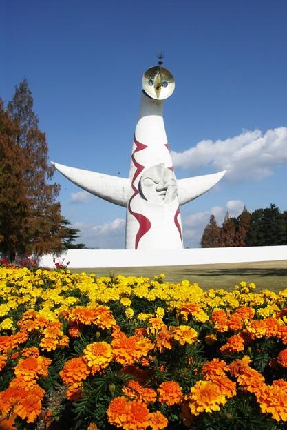 Photos: 太陽の塔:晩秋万博公園01
