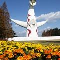 写真: 太陽の塔:晩秋万博公園01