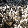 写真: 石に願いを込めて:天安河原07