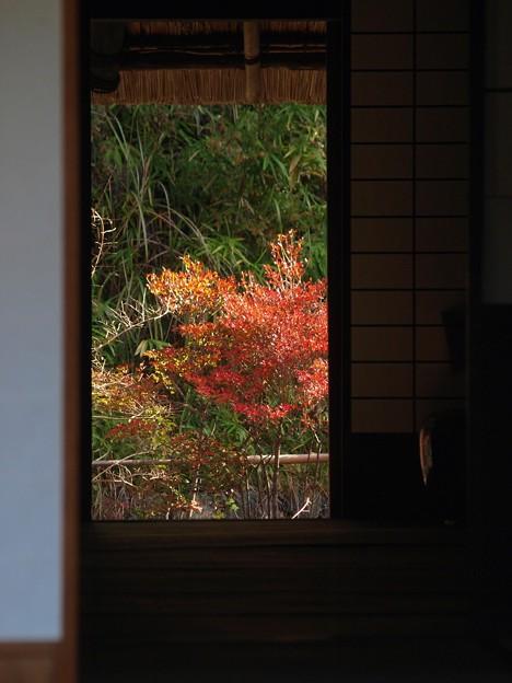 里の秋04