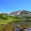 Photos: 立山08:みどりが池