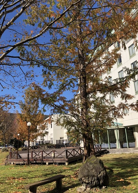 高原ホテルの秋02