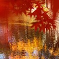 Photos: 染まる水面:紅葉04