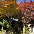 Photos: 行者の湯:洞川(どろがわ)温泉郷04