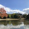 Photos: 大仏池:惜秋大和路01