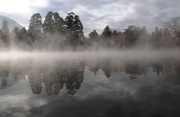 幽玄:金鱗湖02