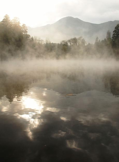 煌き:金鱗湖03