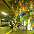 写真: Happy TANABATA^^ 逗子駅