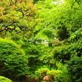緑~高輪プリンス