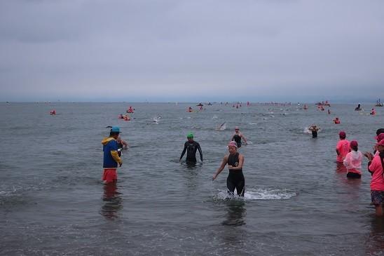 遠泳レース~逗子海岸