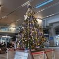 ツリー~富山駅