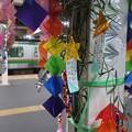 Photos: 七夕飾り~逗子駅