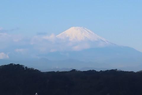 鎌倉からの富士山