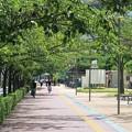 Photos: 公園の昼下がり