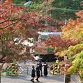Photos: 紅葉~北鎌倉