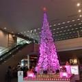 Photos: 品川インターシティ