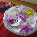 写真: コチョウランの花びら
