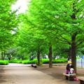 写真: 公園の片隅で・・