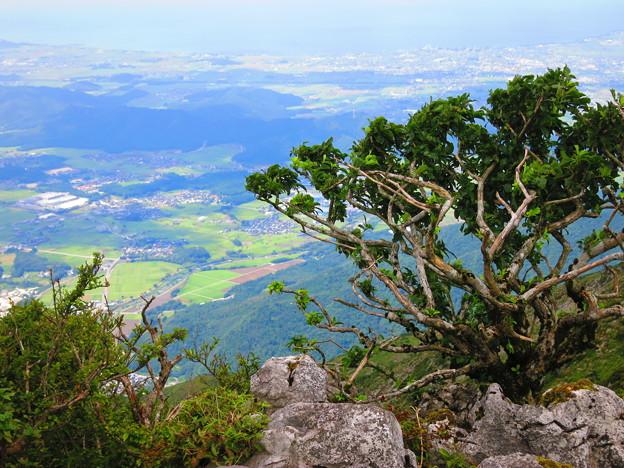 琵琶湖が遠くに・・・