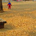 写真: さ~公園独り占め・・・