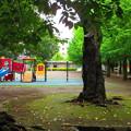 残暑、だれもいない公園